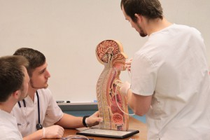 Austin Corsmeier, Alex Henn, Derek Torok, and Evan VanStrien will graduate with Bachelor of Science in Nursing degrees in 2016.