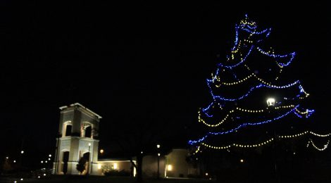 2017 Tree Lighting