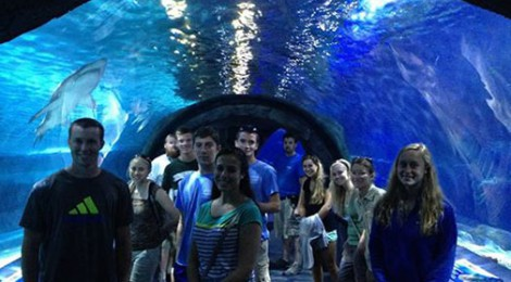 Biology Field Station summer interns get a behind-the-scenes tour of the Newport Aquarium and discuss joint research projects for the coming year.