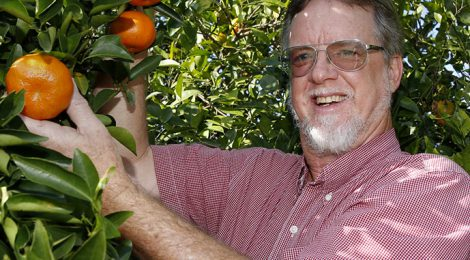 Jude Grosser '76, Bolstering the Citrus Industry